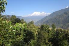 Nepal - Subtropische Vegetation vor der Annapurna