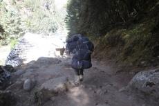 Nepal - Unser Gepäck überholt uns