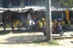 Nepal - Pausensnack, hocharomatisch mit leichter Zitrusnote