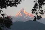 Nepal - Machapuchare (6997m) im Abendrot