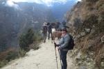 Nepal - Kurz vor Namche Bazar