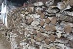 Nepal - Zukünftiges Heizmaterial: getrocknete Yakfladen