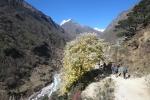 Nepal - Auf dem Weg nach Thame