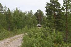 Nordkap, Hurtigruten und Lofoten: Miet-Volvo in schwedischer Wildnis