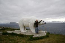 Nordkap, Hurtigruten und Lofoten: Eisbär von Hammerfest