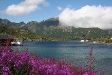 Nordkap, Hurtigruten und Lofoten: Kalle