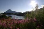 Nordkap, Hurtigruten und Lofoten: Der 'Hotel-Fjord'