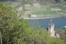 Rheinburgenweg #4 - Burg Sooneck