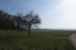 Rheinburgenweg #1