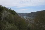 Rheinburgenweg #4 - Oberwesel