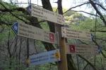 Rheinburgenweg #4 - Schilderwald