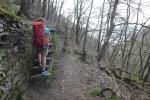 Rheinburgenweg #2 - Bergauf durch die Moselterrassen