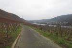 Rheinburgenweg #2 - Bei Winningen