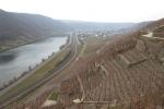 Rheinburgenweg #2 - Blick zurück auf Winningen