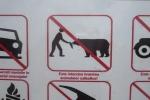 Karpaten - Bären füttern verboten