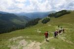 Karpaten - Abstieg ins Ialomita-Tal