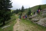 Karpaten - Aufstieg zum Strunga-Sattel