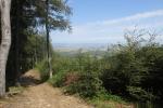 Karpaten - Der einzige Ausblick der Runde