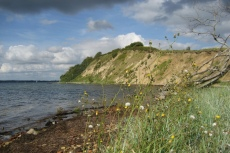 Schleswig-Holstein: Steilküste Holnis