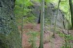 Thüringer Wald: Rund um die Wartburg