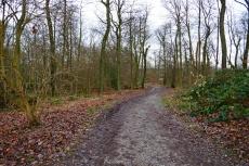 Track & Trail Rüttenscheid