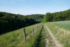 Track & Trail Asbachtal