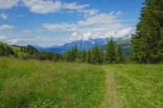 Kitzbüheler Alpen – Auf die Hohe Salve