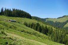 Kitzbüheler Alpen – Vom Hartkaiser zum Hollenauer Kreuz