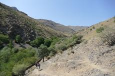Usbekistan - Wanderung zu den Petroglyphen