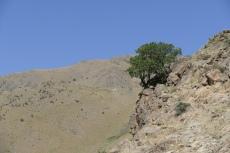 Usbekistan - Wanderung bei Khayat