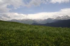 Via Engiadina - Almwiese