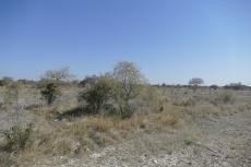 Namibia - Öde Kalahari
