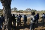 Botswana - Flusspferde im Khwai