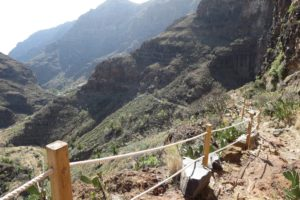 Read more about the article La Gomera – Barranco de Guarimiar