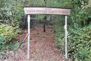 Traumschleife Ruwer-Hochwald-Schleife
