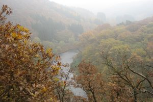 Read more about the article Über die Wupper gegangen…