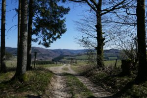 Sauersteig – Steinmandl Runde – Haghene