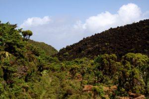 Azoren: Terceira – Misterio do Negros und Algar do Carvao