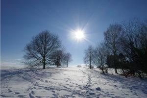 Rund um den Kalwes – Schneewanderung