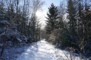 Drei-Dörfer-Weg Esborn – Schneewanderung