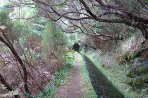 """Madeira: """"Geheimpfade"""" rund um Rabacal"""