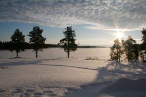 Lapplands Drag – Geführte Huskytour: Tag 4