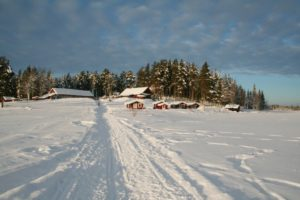 Read more about the article Lapplands Drag – Geführte Huskytour: Tag 1