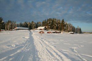 Lapplands Drag – Geführte Huskytour: Tag 1