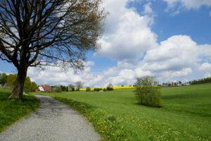 Read more about the article Von Breckerfeld zur Glörtalsperre
