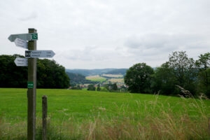 Read more about the article Diemelsteig – Von Stormbruch nach Heringhausen