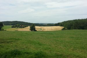 Sauersteig – Romberg Runde – Menden