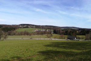 Read more about the article Wandertag – Marialinden Tour 4 – Naafbachtalrunde