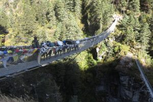 Read more about the article Nepal Tag 8 – Phakding – Namche Bazar