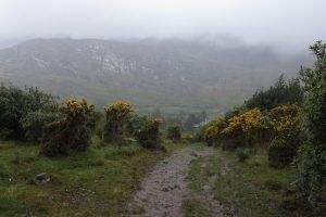 Irland: Beara Way – Von Glengarriff nach Adrigole